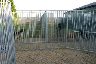 Hondenpension De Wijde Akker - Foto's