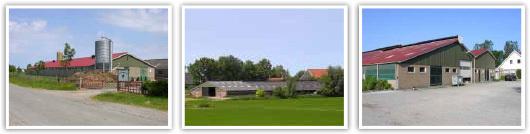 Bouwbedrijf Nieuwenhuis en Bouma BV - Foto's