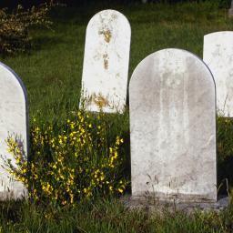Rooms Katholieke Begraafplaats St Barbara - Foto's