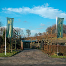 Lemmens Hoveniersbedrijf & Tuincentrum - Foto's
