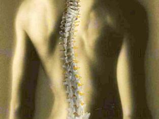 Chiropractie Utrecht - Foto's