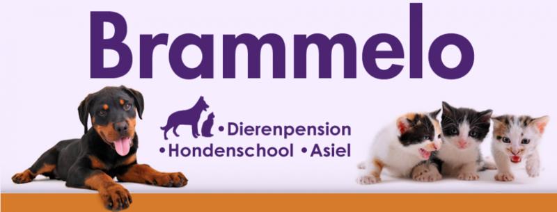 Brammelo VOF Dierenpension - Foto's