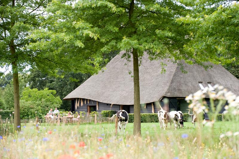 Vergader- en Groepsaccommodatie Landgoed De Hoevens - Foto's
