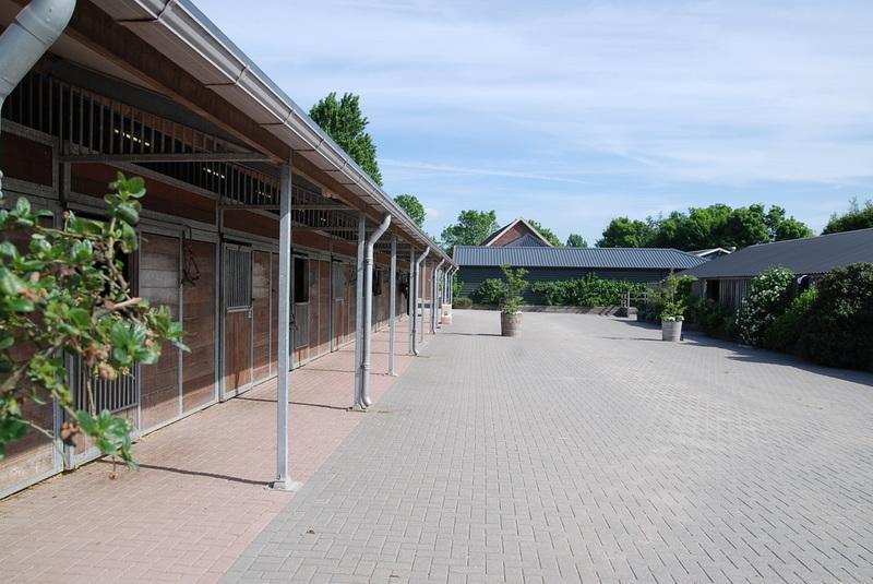 Dierenartsenpraktijk Bodegraven BV - Foto's