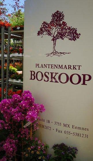 Boskoop Plantenmarkt - Foto's