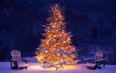 Mooie brandende kerstboom buiten in de sneeuw hd kerst wallpaper 1