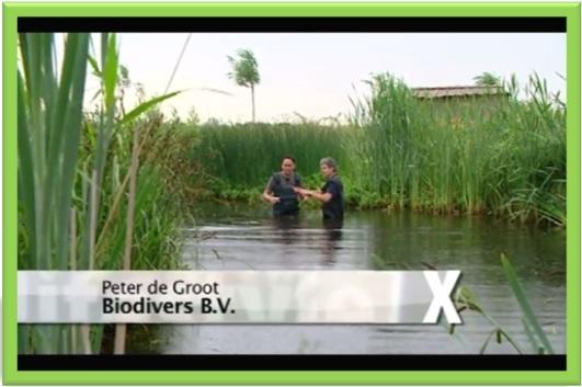 Biodivers