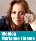Mthieme