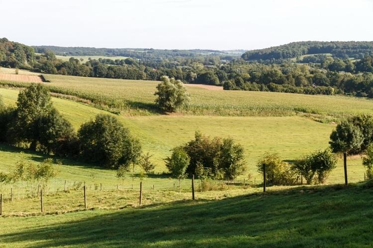 Heuvellandschap3